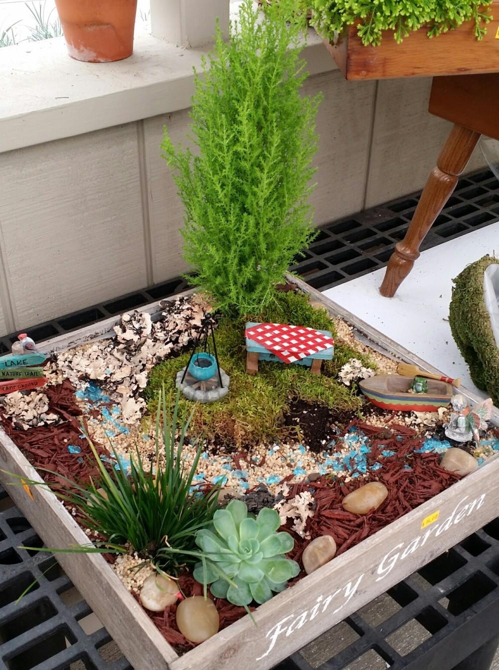 Garden Projects For Kids: Miniature Fairy Garden Ideas DIY